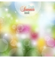 Summer background of flowers and herbs vector image vector image
