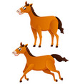 two brown horses with happy face vector image vector image