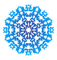 color snowflake lace color on white vector image