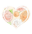 delicate tulips and peonies in the heart on a vector image vector image
