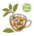 hand drawn cup tea green tea and jasmine vector image vector image
