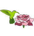 Hummingbird and rose vector image vector image
