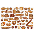 pastry shop products bread and bakery vector image vector image