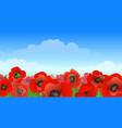poppy field landscape vector image vector image