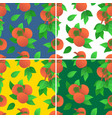ripe orange persimmons wallpapers set vector image vector image