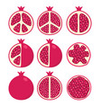 set of stylized pomegranates vector image