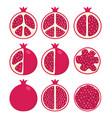 set stylized pomegranates vector image