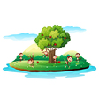 An island with playful monkeys vector image vector image
