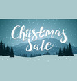 christmas sale discount banner with large vector image