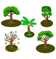 collection of of some trees vector image vector image