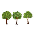 garden trees with green vector image vector image