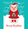 merry christmas card funny vector image