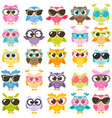 set of colorful owls with glasses isolated vector image vector image