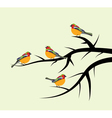 birds on tree branches vector image