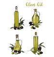 bottles with olive oil sketches branch with berry vector image vector image