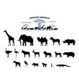 set black silhouette wild african animals vector image vector image