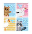 set of hello baby cards vector image