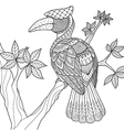hornbill coloring vector image