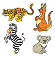 animals set zebra leopard koala kangaroo vector image