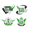 ball icons soccer bar or football beer pub vector image vector image
