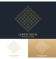 Geometric abstract logo with connected line and vector image vector image