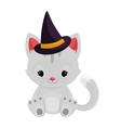 Halloween witch cat isolated on white background vector image vector image