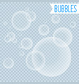 soap bubbles white shampoo clipart on transparent vector image