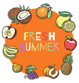 summer fruits hand drawn vector image