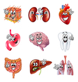 Funny cartoon human organs icons set vector image