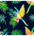 Macaw seamless pattern Black background vector image