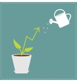 Diagram arrow plant in the pot and watering can vector image