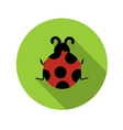 Flat Design Concept Ladybug With Long Shadow vector image vector image