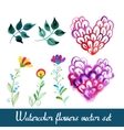 Set of beautiful watercolor flowers vector image vector image
