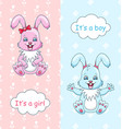 baby shower congratulation card with rabbits boy vector image vector image