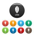 lemon leaf icons set color vector image vector image