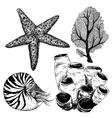 Sea life set vector image vector image