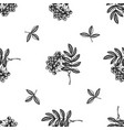 seamless pattern with black and white rowan vector image vector image