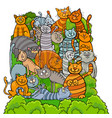 cat characters group cartoon vector image