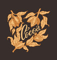 cocoa leaves vintage badge or logo for t-shirts vector image vector image