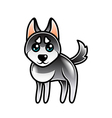 Cute cartoon husky dog isolated vector image vector image