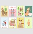 llama cards baby llamas cute alpaca and cacti vector image vector image