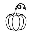Pumpkin of Thanksgiving design vector image vector image