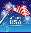 american flag with fireworks for independence day vector image