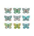 Butterfly cute bundle