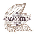 cacao beans organic ingredients monochrome emblem vector image