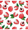 lychee fruit seamless pattern exotic fruit litchi vector image vector image
