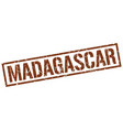 madagascar brown square stamp vector image