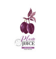 plum juice logo template vector image