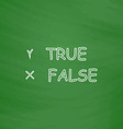 True and False computer symbol vector image vector image