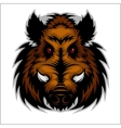 Wild Boar Head Logo Mascot Emblem vector image vector image
